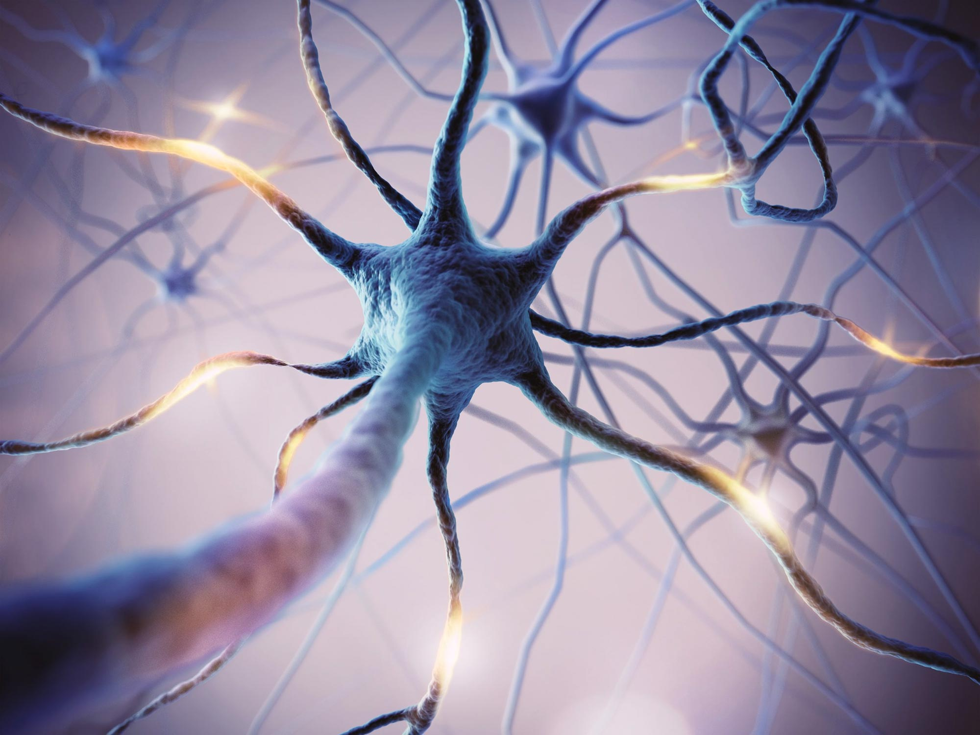 """Brain Cells Decide on Their Own When To Release """"Feel Good"""" Pleasure Hormone"""