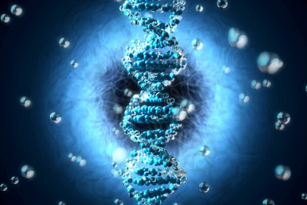 Decoding Human History With Ancient DNA From Extinct Archaic Humans